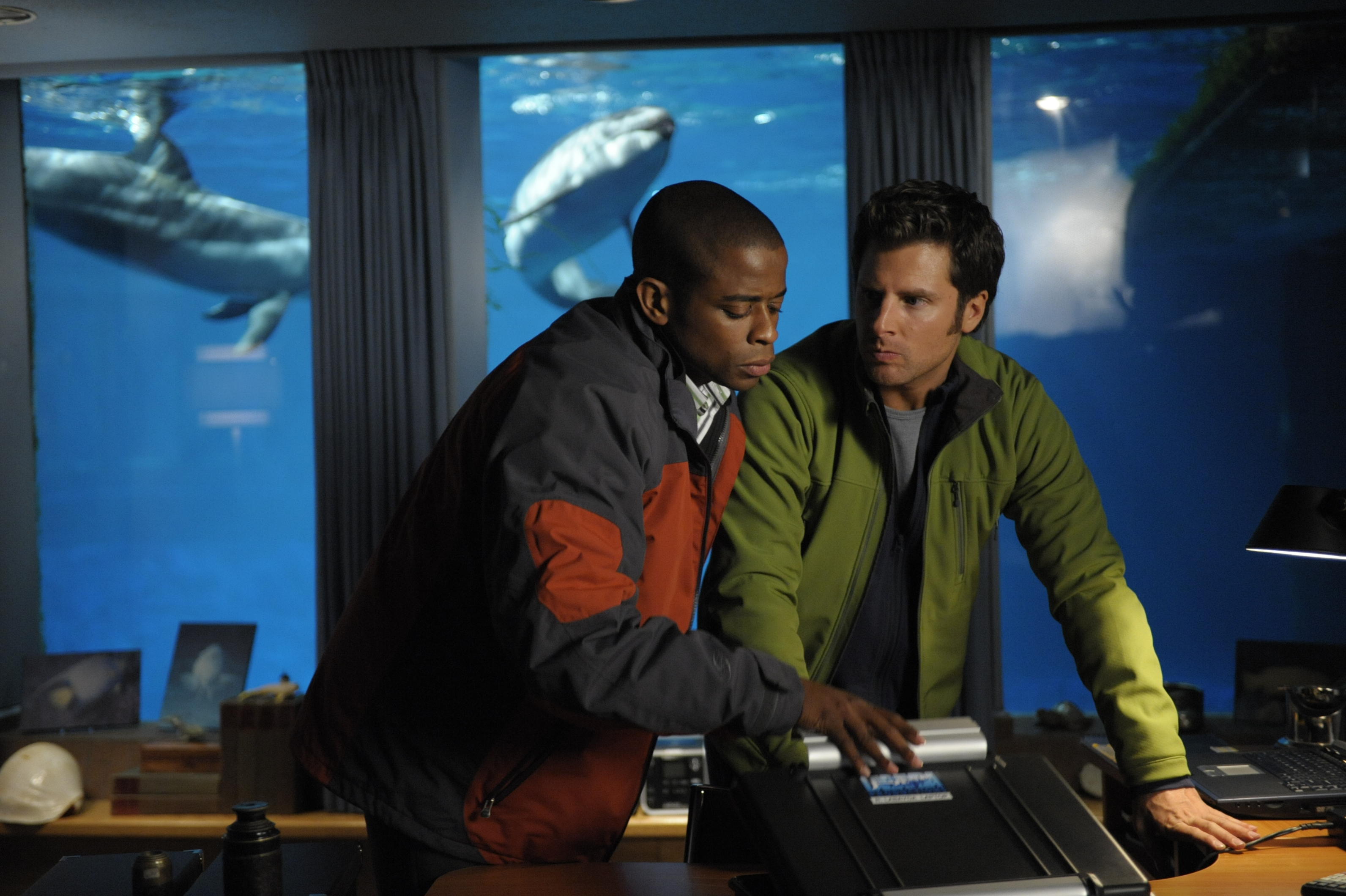Continuing their third season on USA, the gang from PSYCH is back with